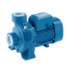 Pedrollo Three Phase Centrifugal Water Pump